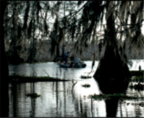 Crawfisherman in Atchafalaya
