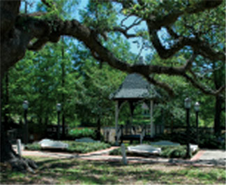 Gazebo on Bayou Tech, Evangeline Oak on Left